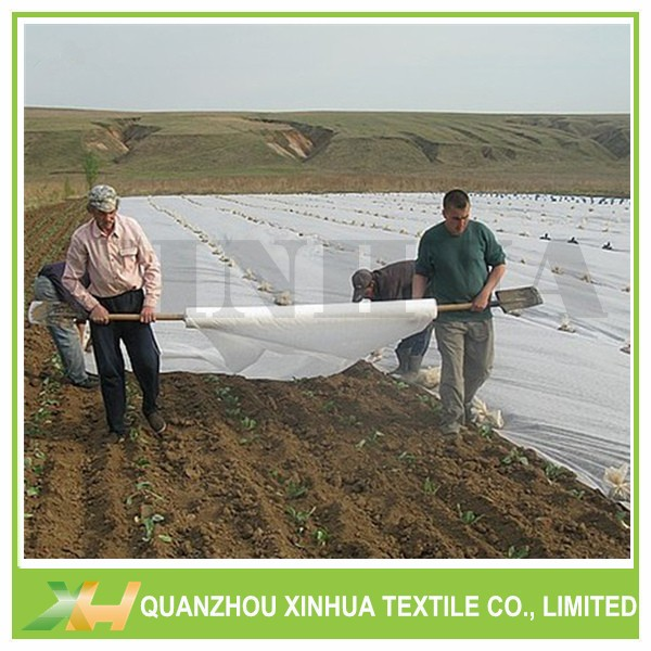 Agricultural non woven crop cover pp spunbond nonwoven fabric