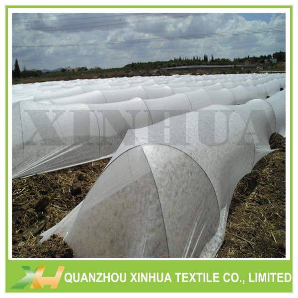 Factory Supply PP Spunbond Agriculture Nonwoven