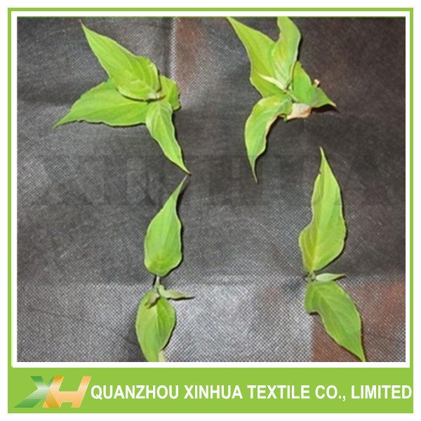 Weed Control PP Non Woven Fabric Agriculture Rolls